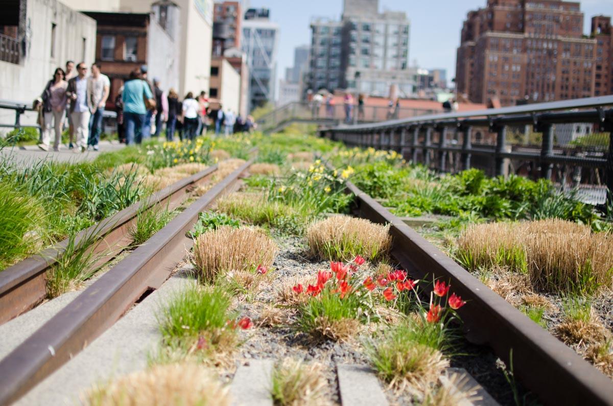 High Line | Photo Credit: ©Find. Eat. Drink.