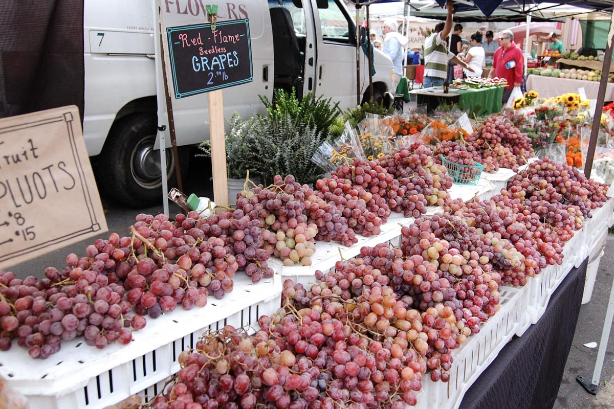 Photograph courtesy of La Jolla Open Aire Market