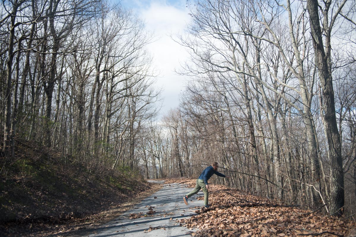 Clearing Tree Branches along Virginia's Route 610 | Photo Credit: ©Find. Eat. Drink.