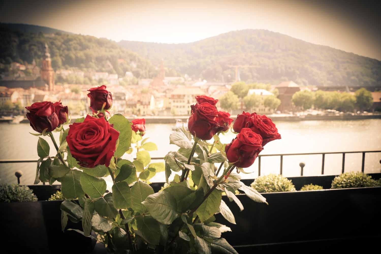 Fotostudio fotoinitiative Mannheim Hochzeitsfotoshooting Brautpaarfotoshooting Fotoshooting Fotografin Jaytee Van Stean Heidelberg Ludwigshafen-35.jpg