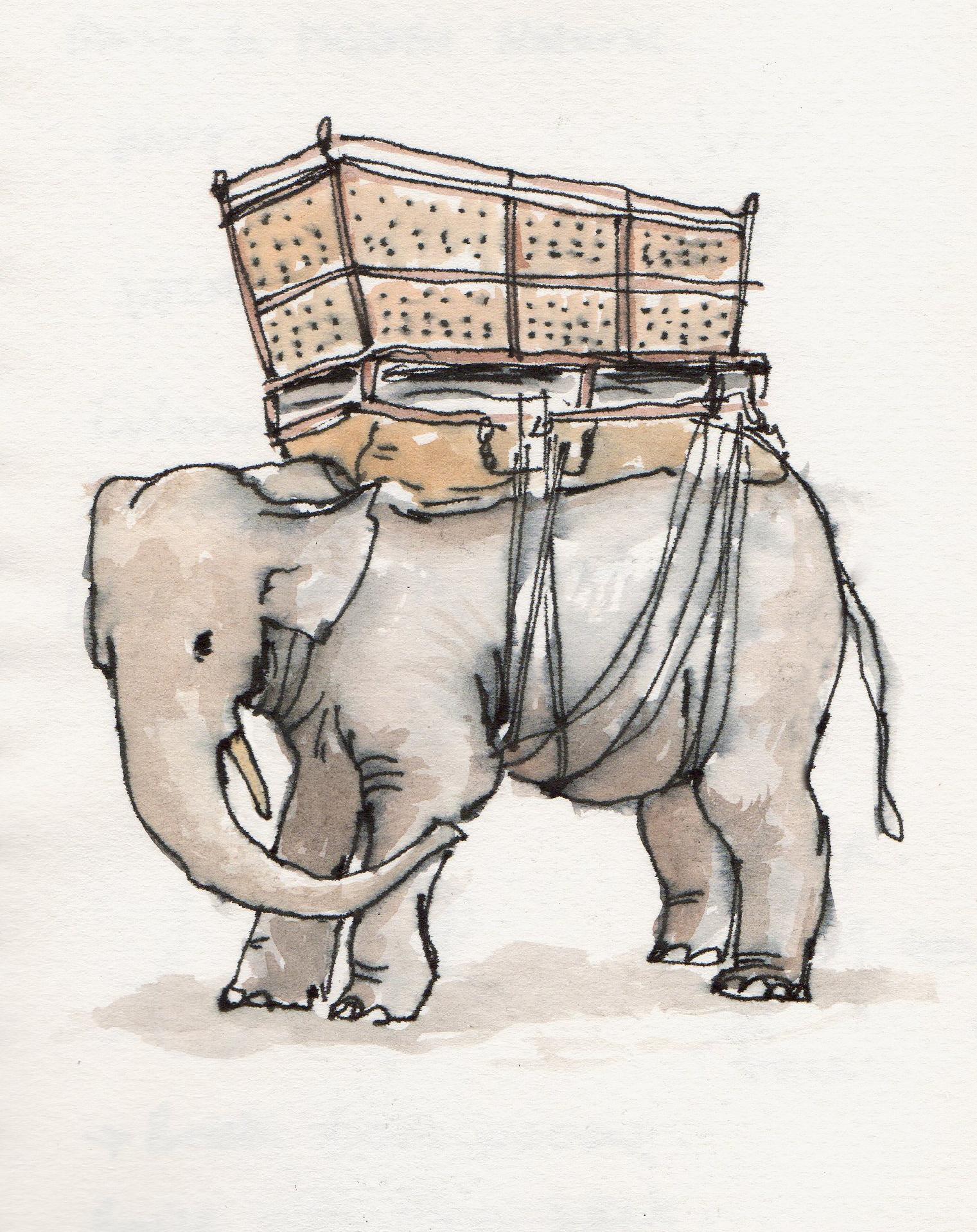 elephant_josephwallace.jpg