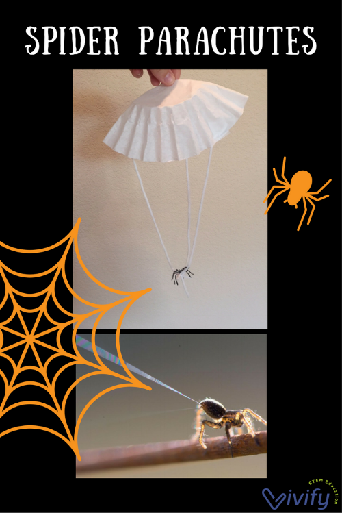 Watch out for spiders with parachutes! Learn about this amazing ability and make your own ballooning spiderling.