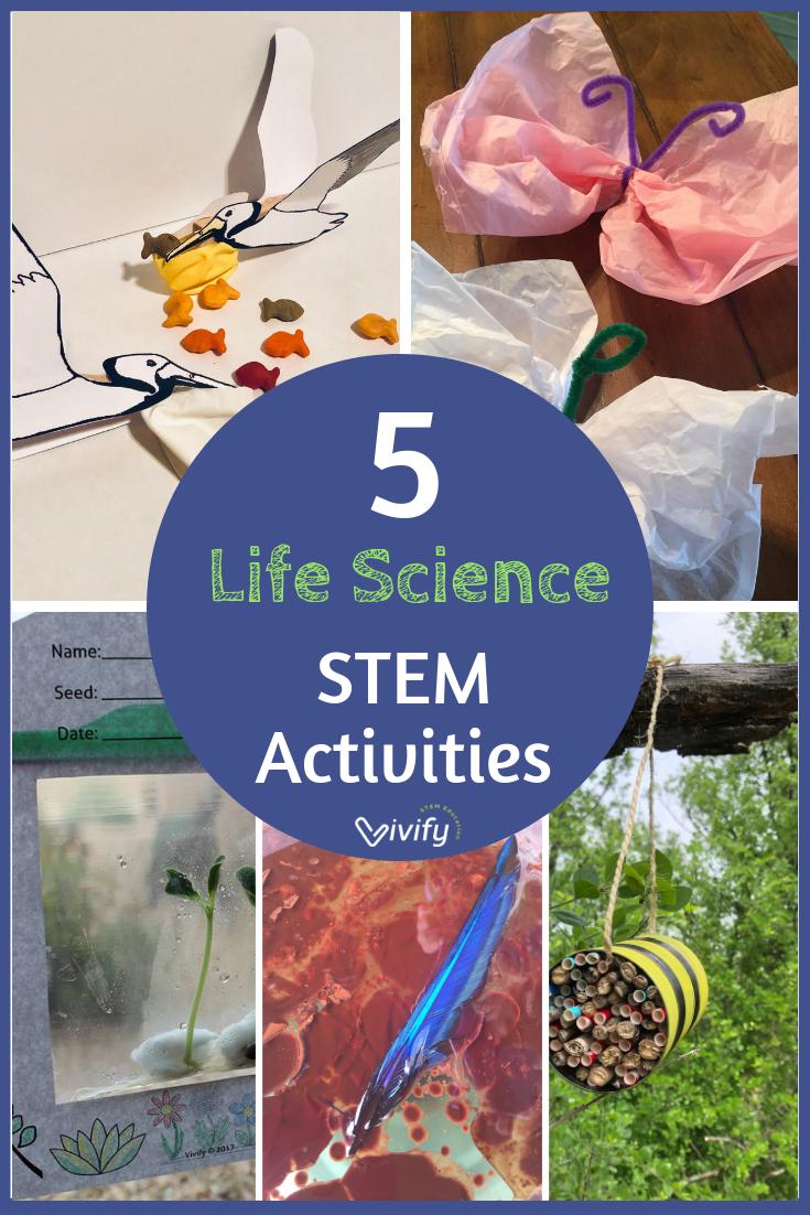 5 Life Science STEM Activities from Vivify STEM.