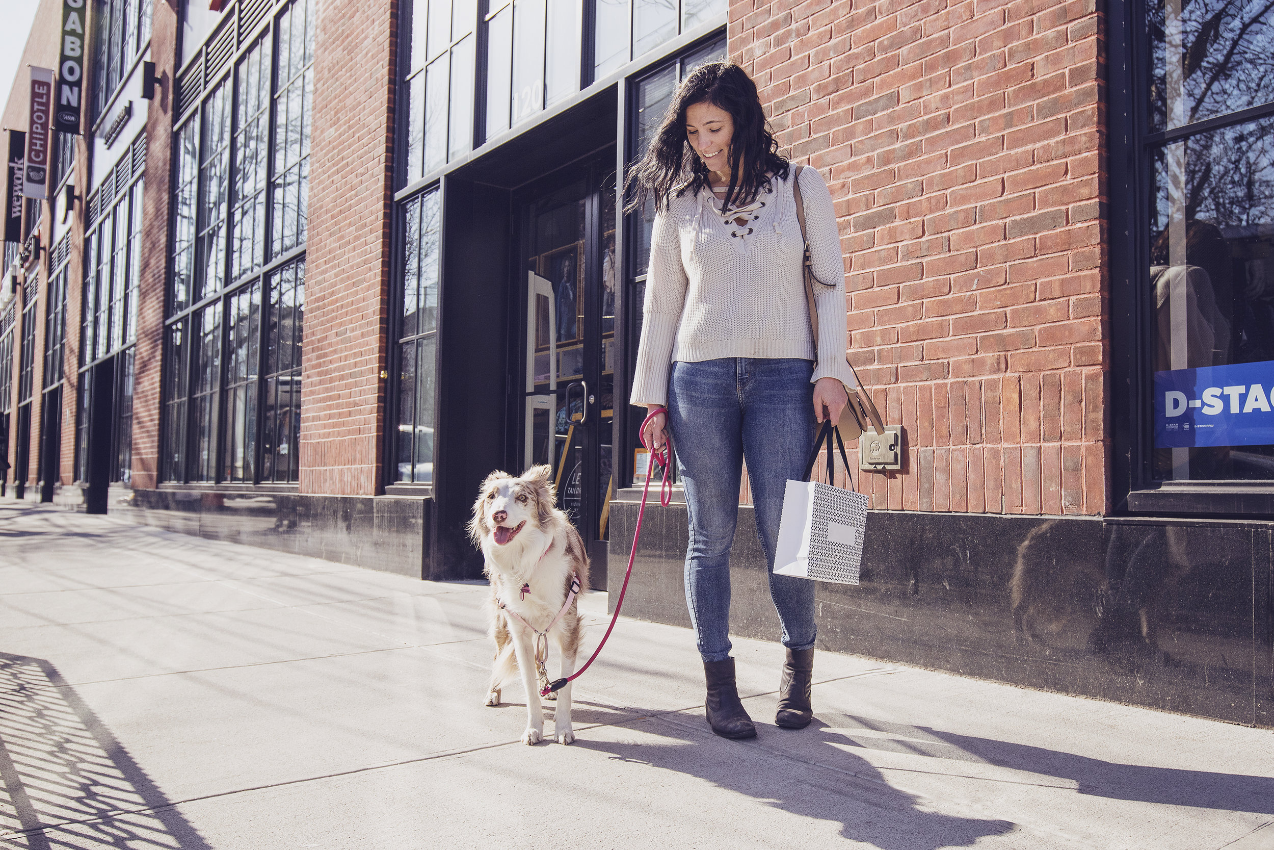 45 MILLION DOGS ACCOMPANY THEIR GUARDIANS ON ERRANDS EVERY WEEK - EACH DOG WALKING PAST YOUR BUSINESS COULD BE A LOST SALE