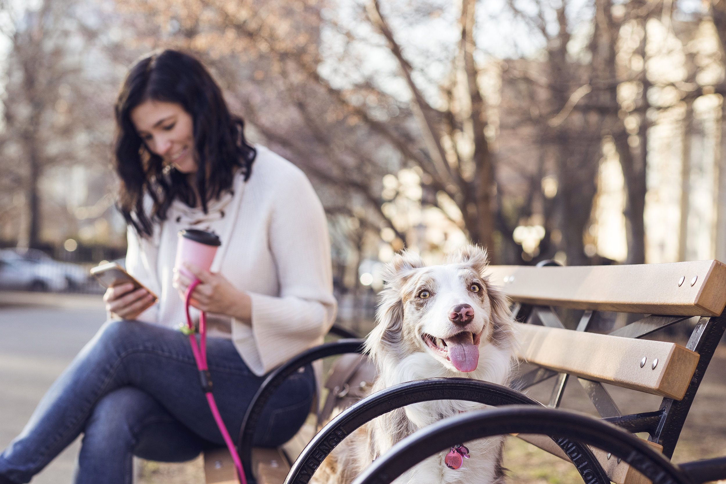 DOG-FRIENDLY IS GREAT FOR BUSINESS -