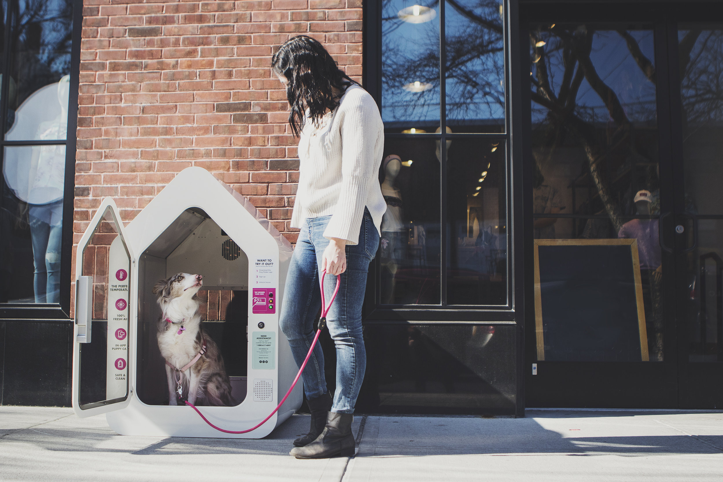 GET A DOGSPOT FOR YOUR BUSINESS -