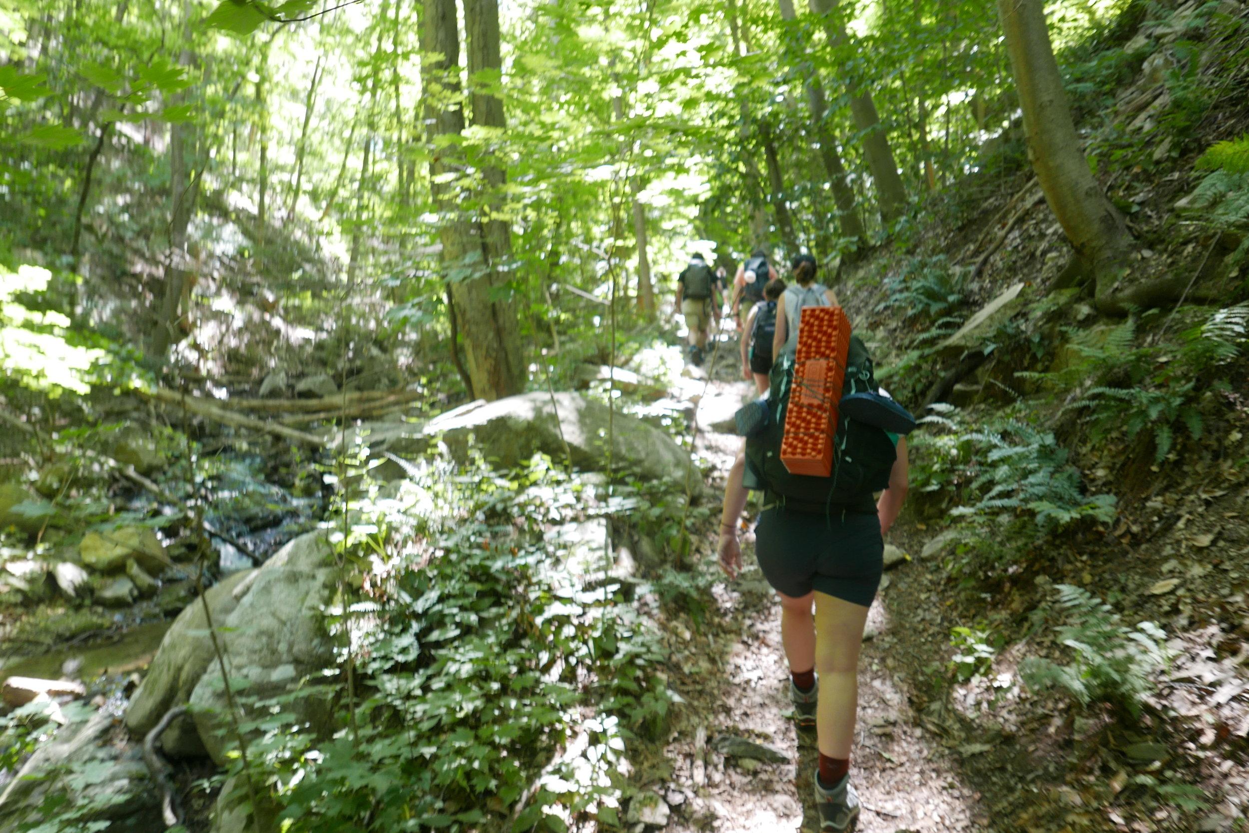 Hike beginning
