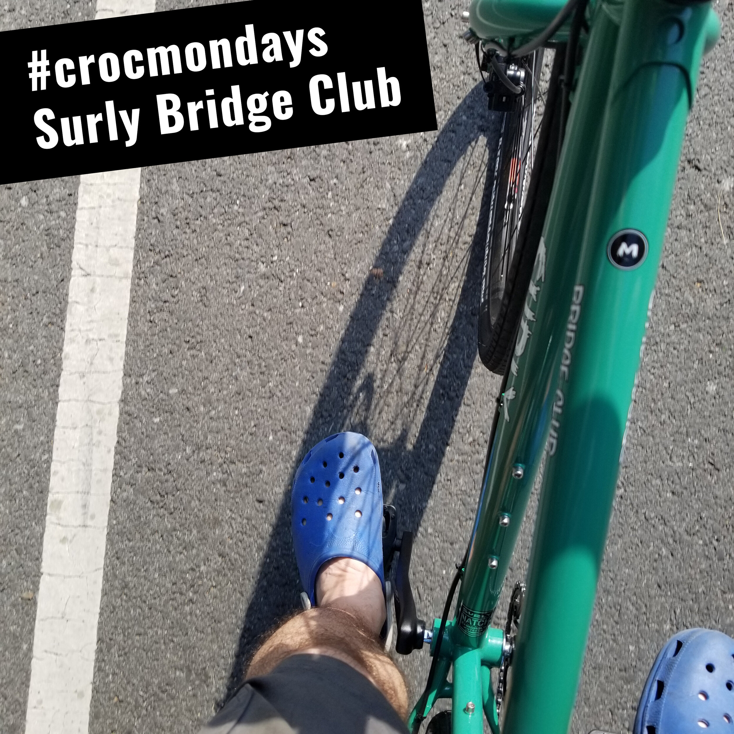 #crocmondays The Surly Bridge Club