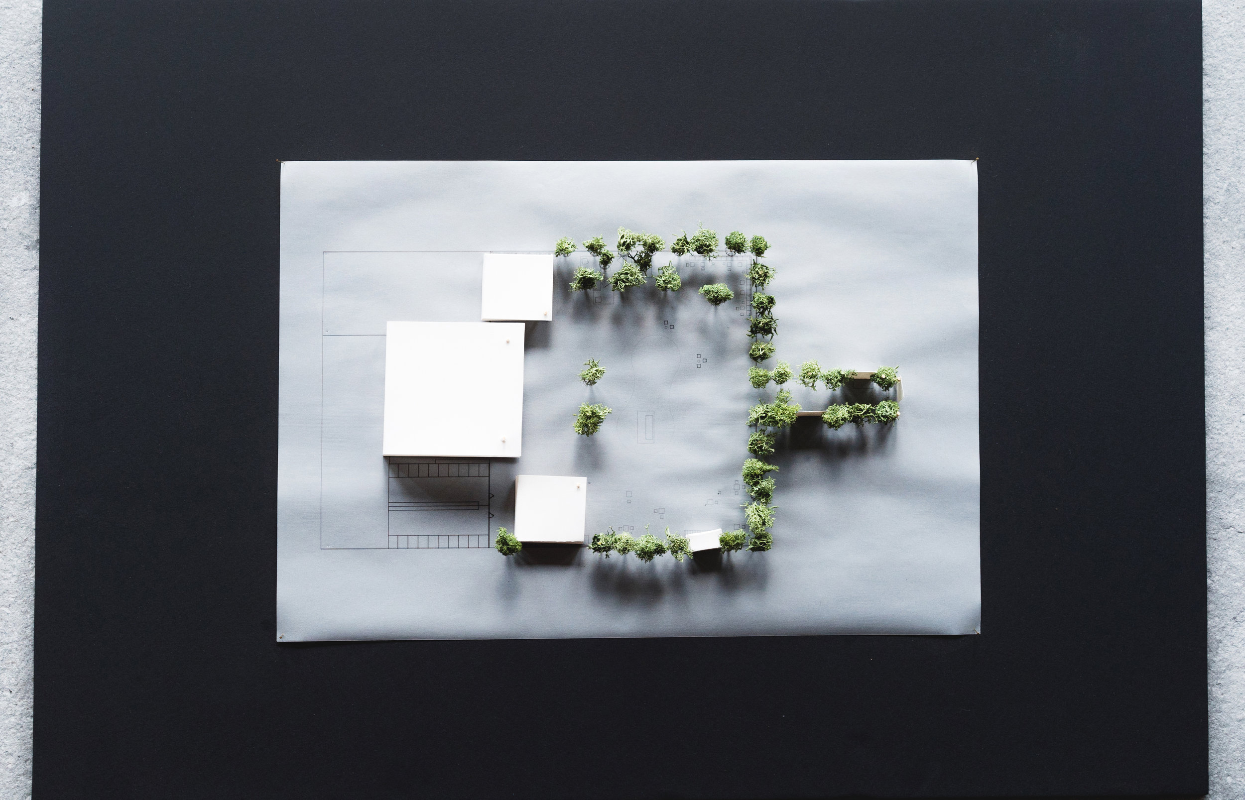 Modern pavilion - contest