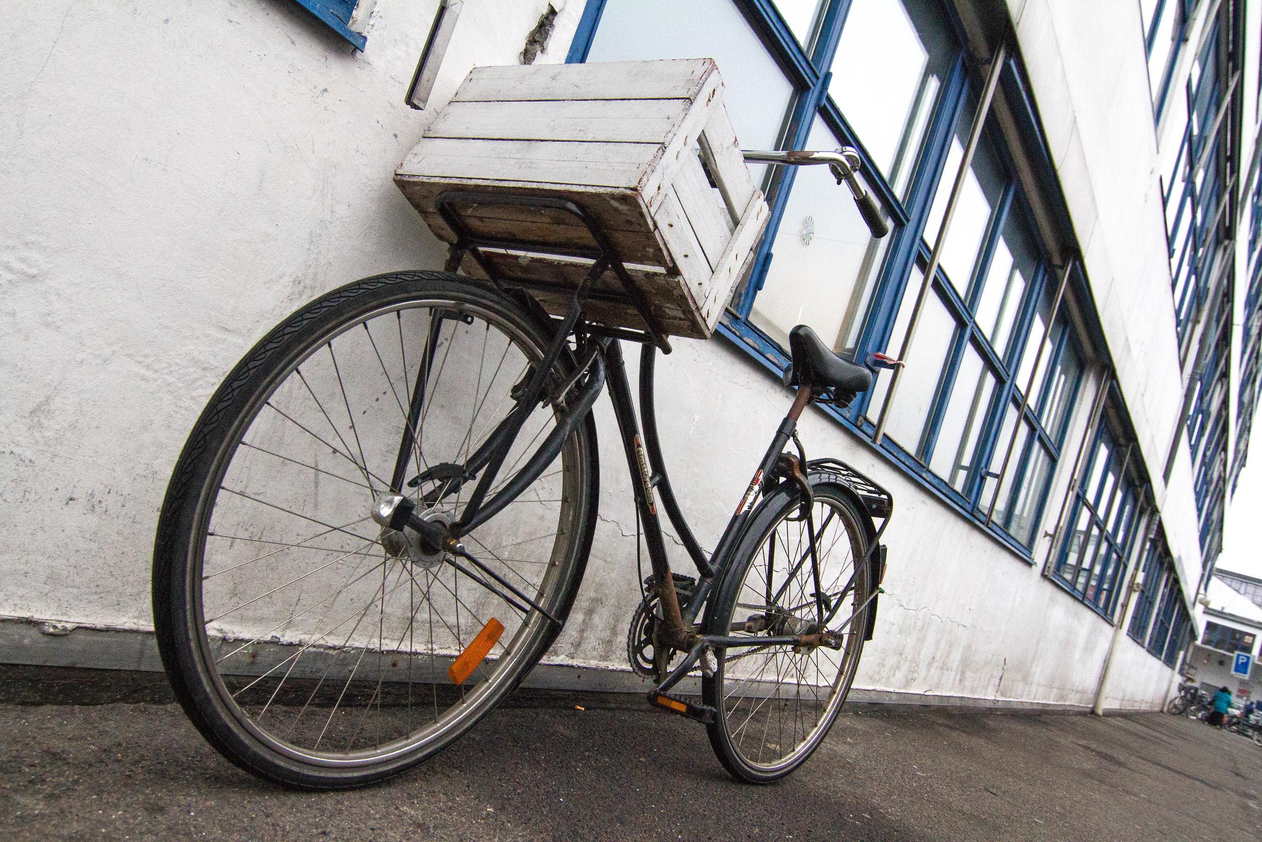 Biking Around Town