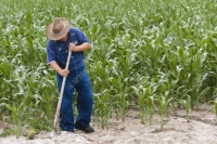6550128-Farmer-working-on-his-farm-Stock-Photo-field.jpg