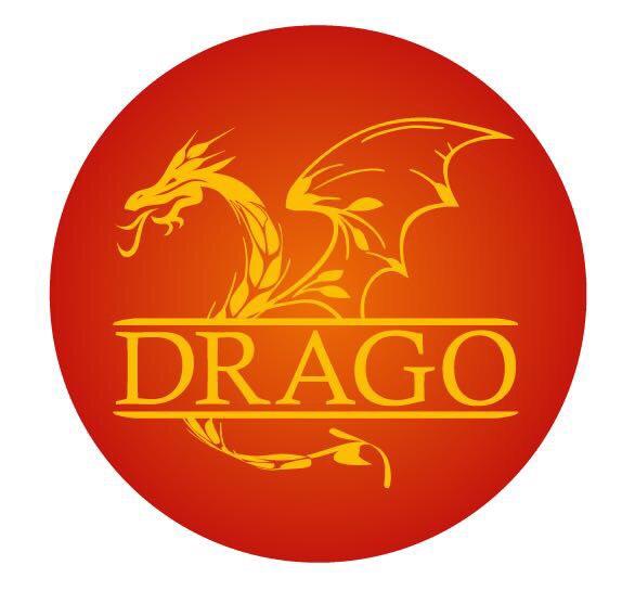 drago log b.jpg
