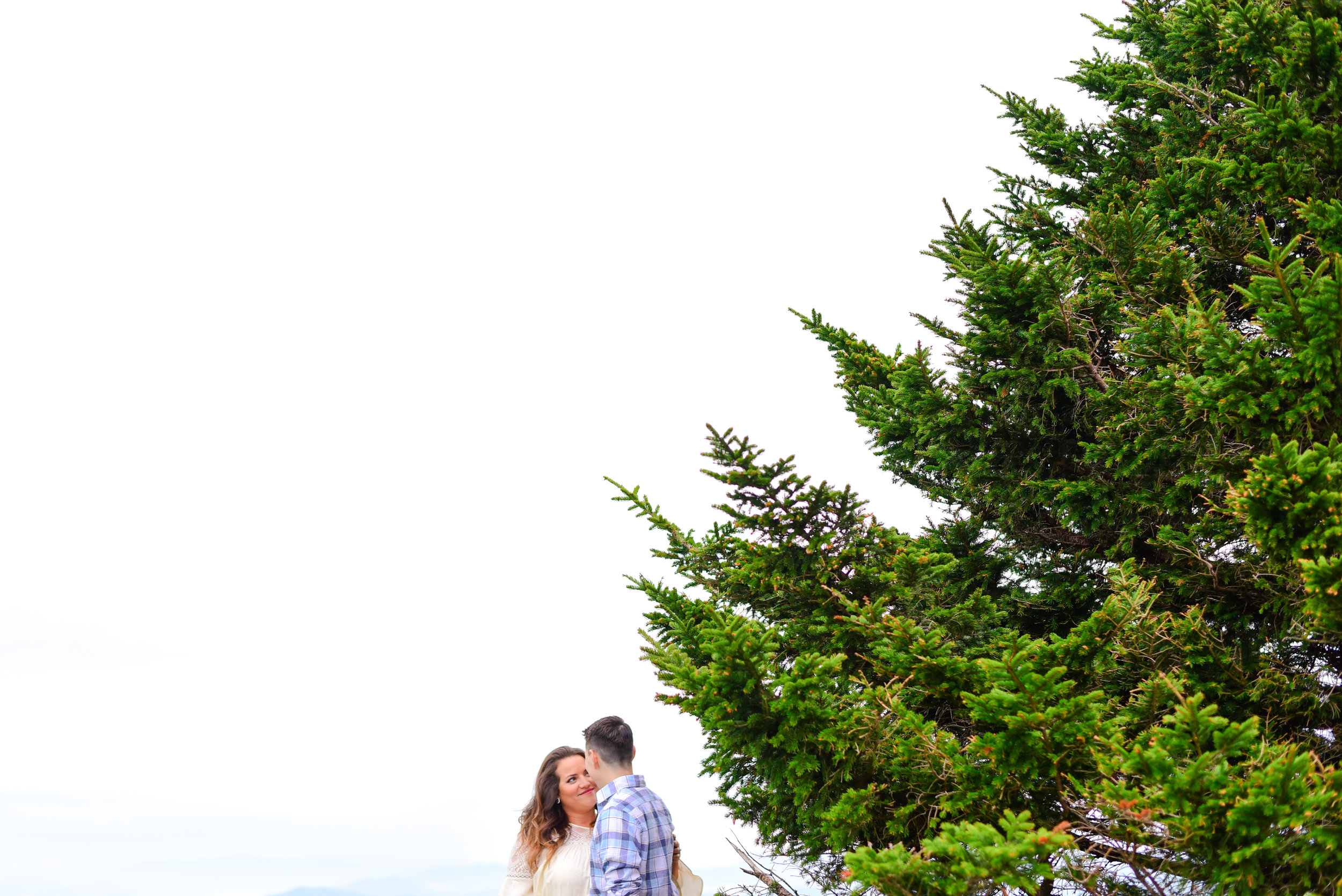 Engagement photos roan mountain