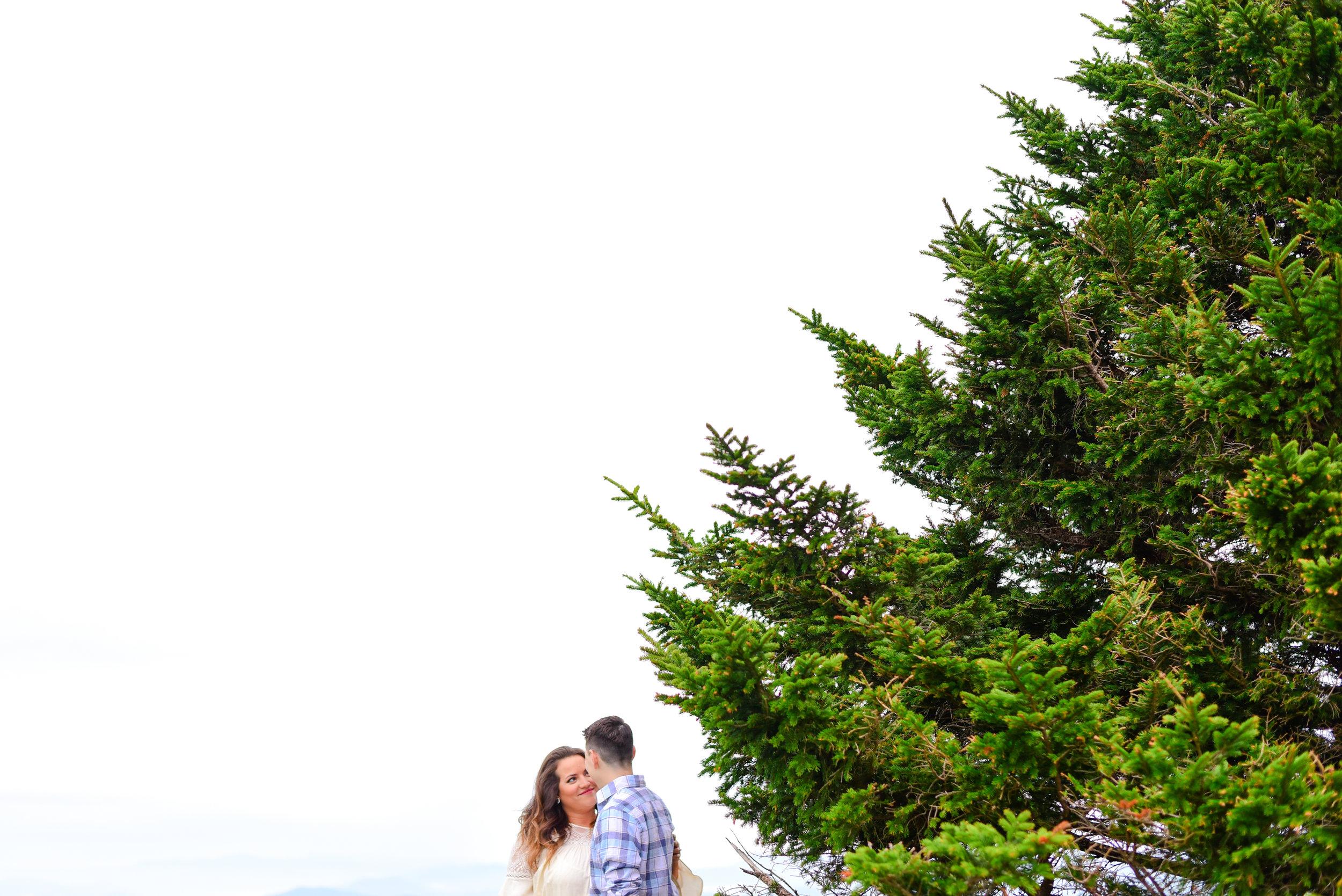 Engagement photos roan mountain