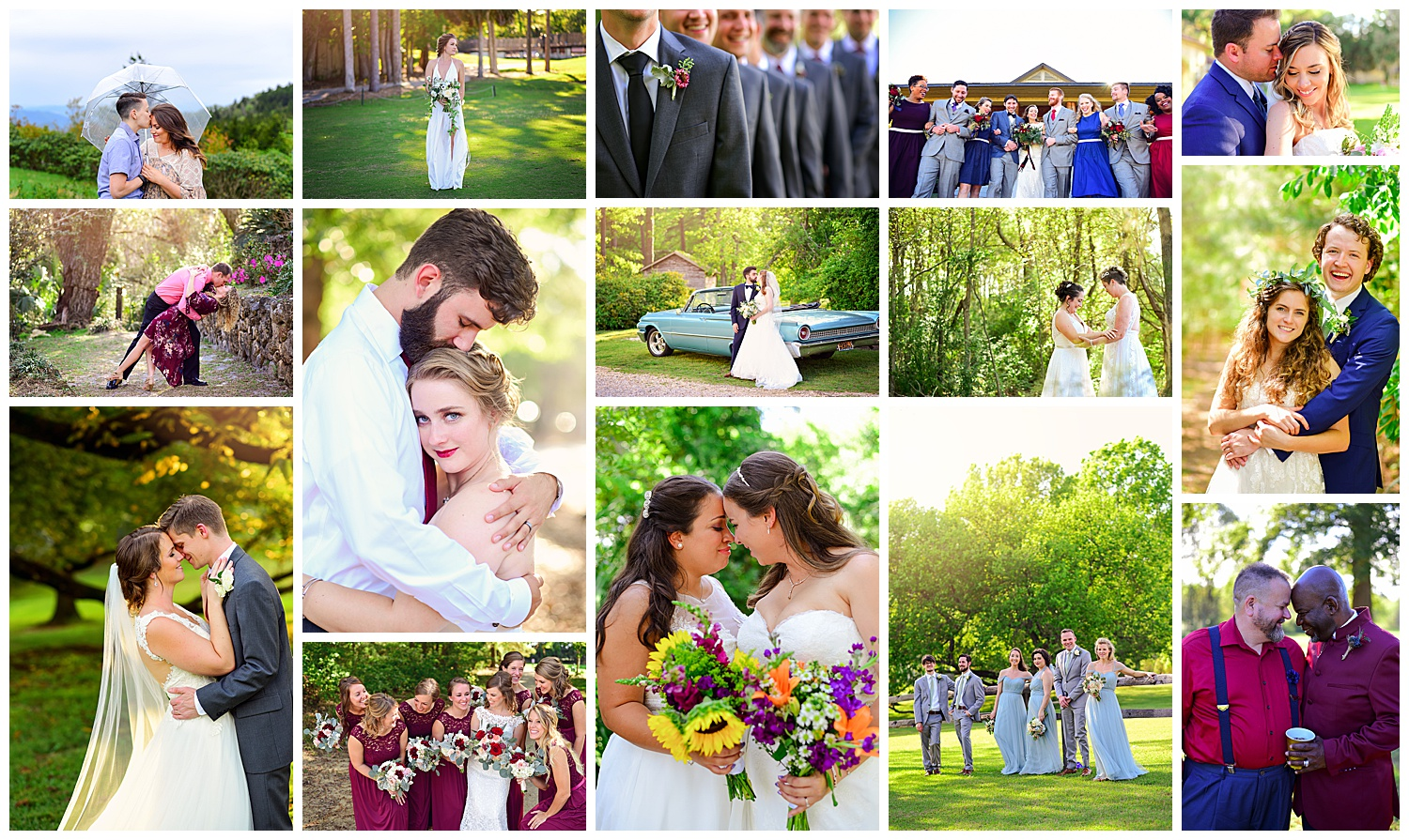 Bright and Bold Wedding Photography