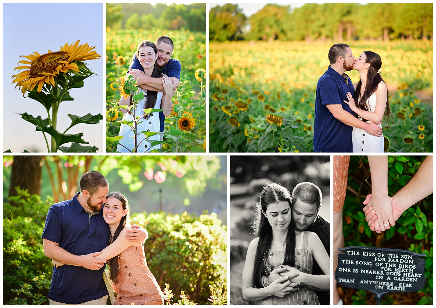 Sunflower Field at Dix Park Engagement Session
