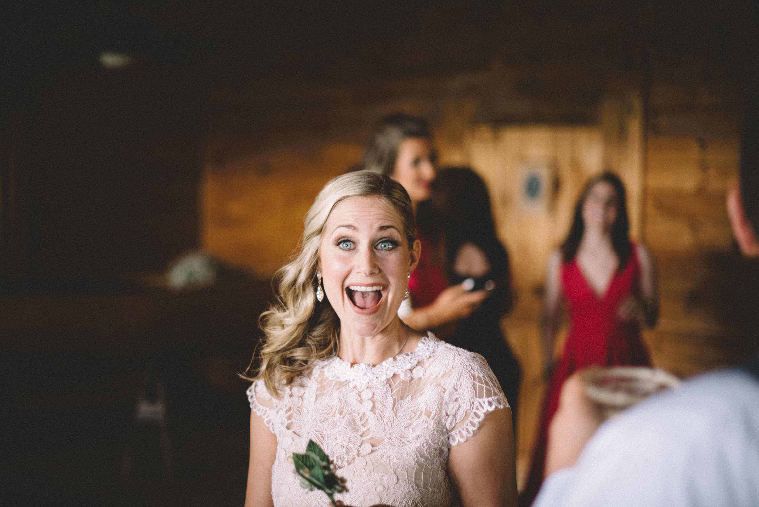 Stanley, Virginia wedding photographer