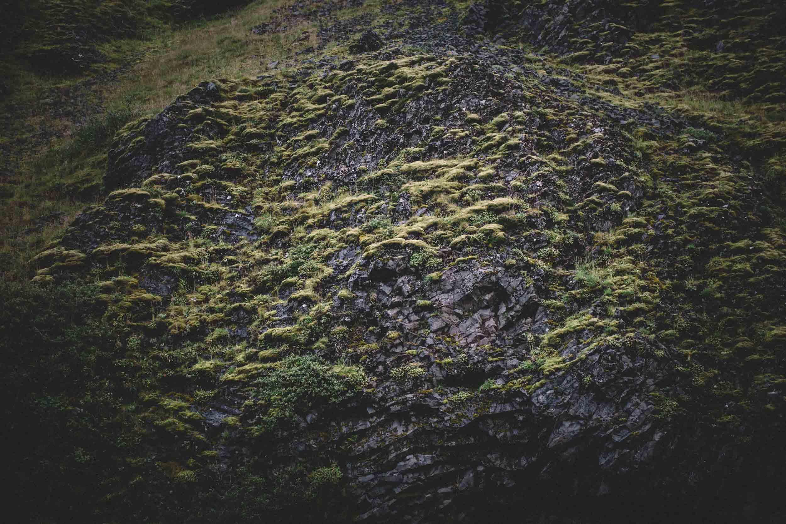 scouting-iceland-25.jpg