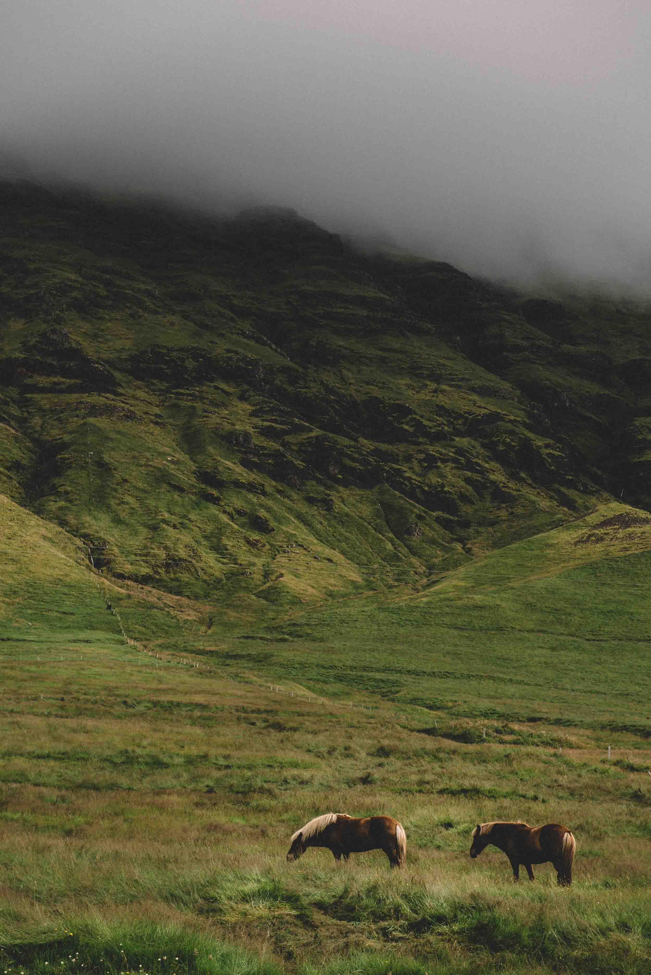 scouting-iceland-38.jpg