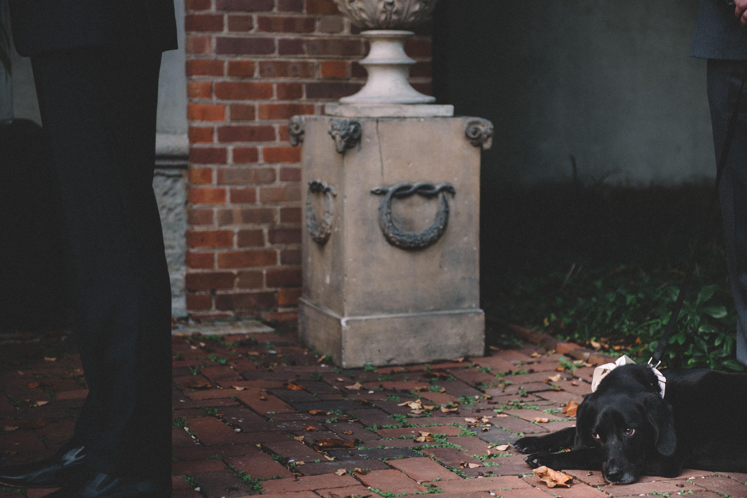 Dumbarton-House-wedding-46.jpg