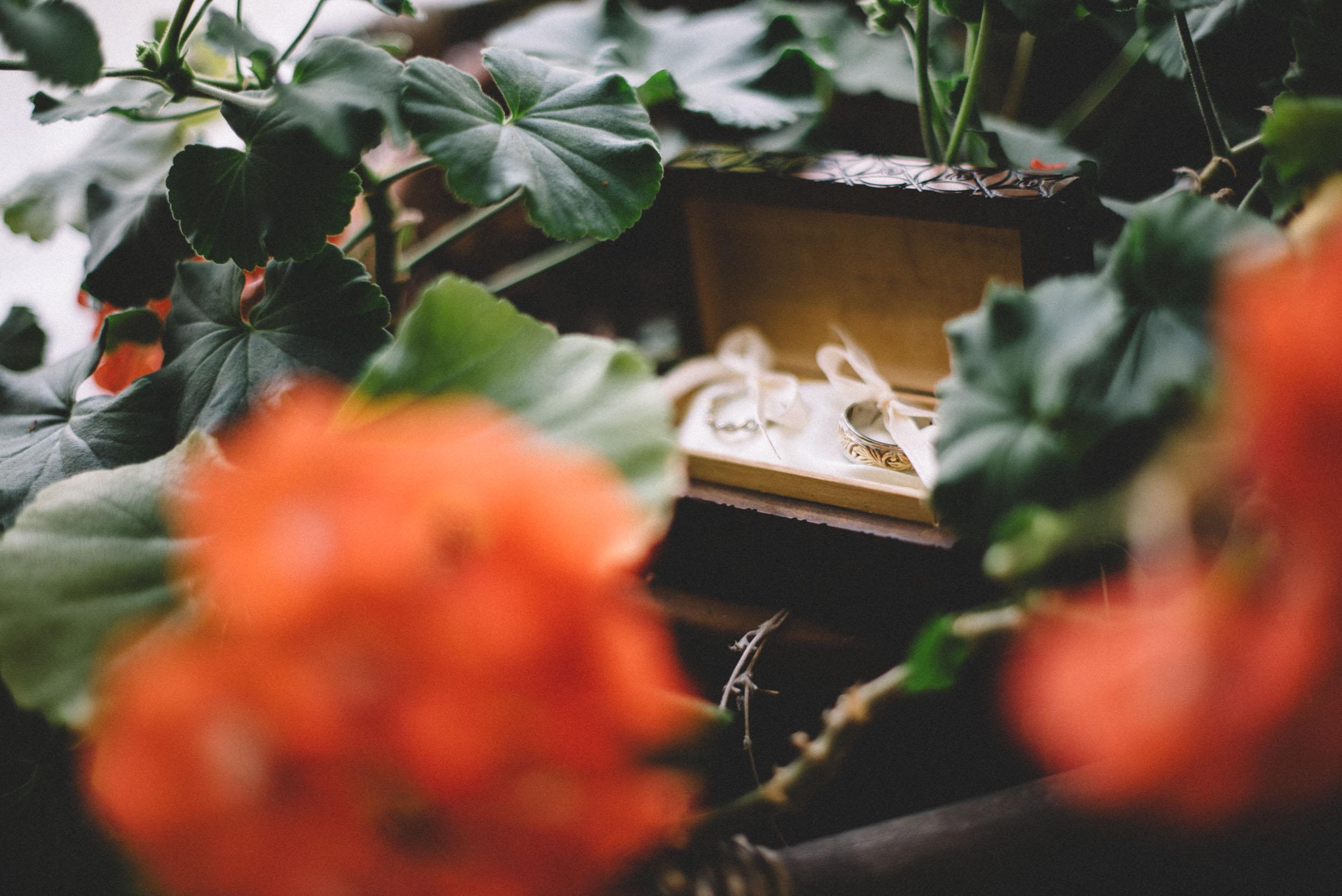 Gaie-Lea-Staunton-weddding-photographer-43.jpg
