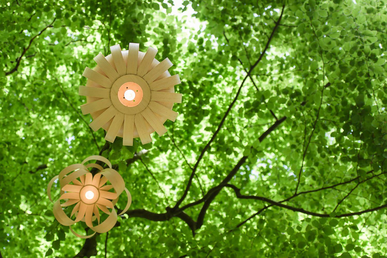 Lanterns_0007.jpg