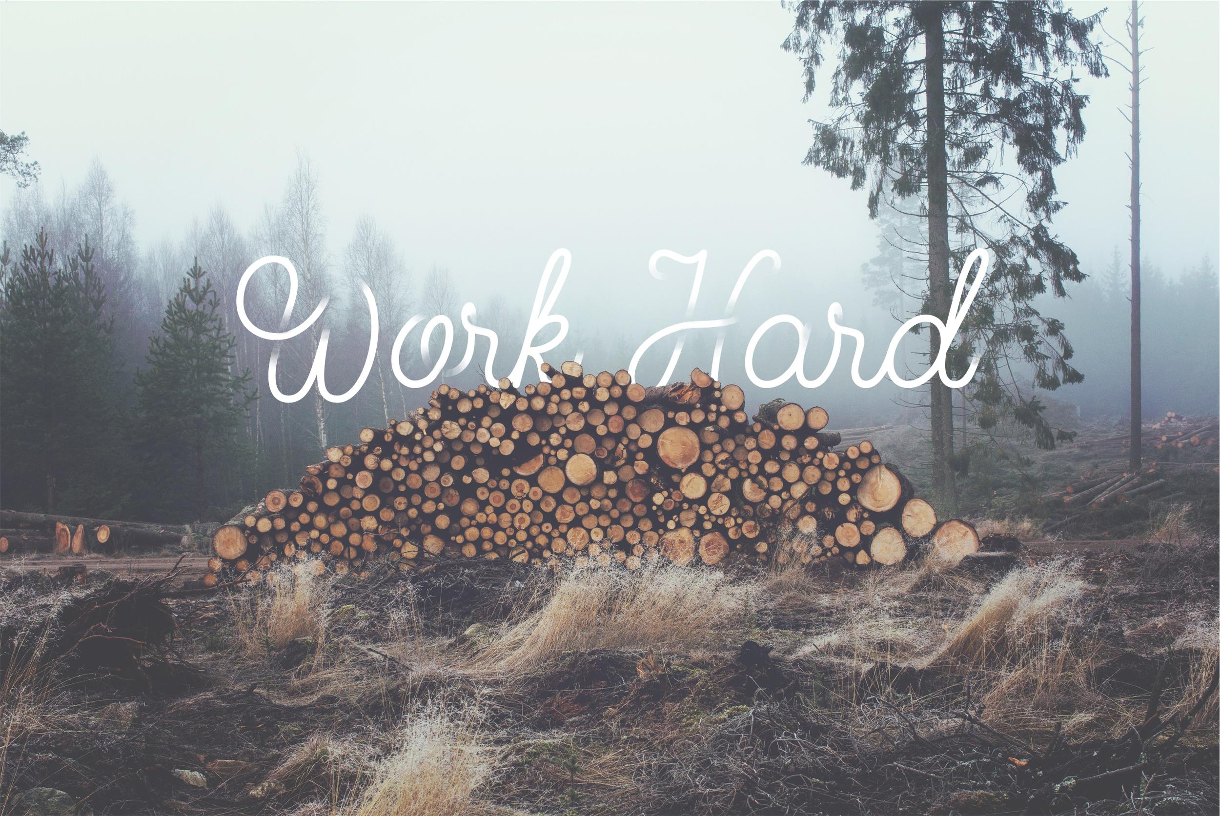 work-trees.jpg
