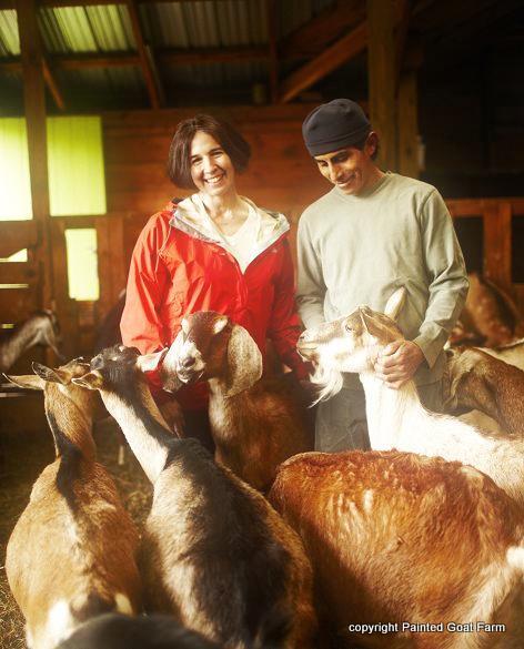 Painted Goat Farm