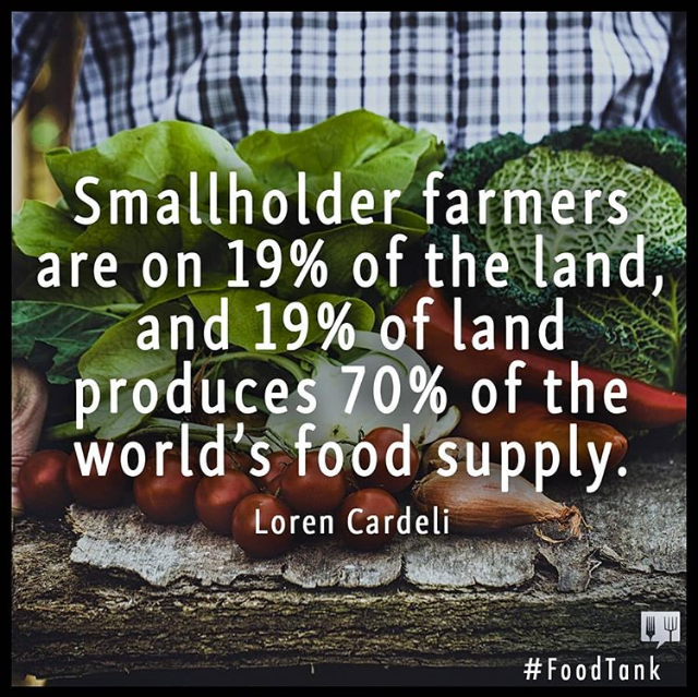 smallholder farms.png