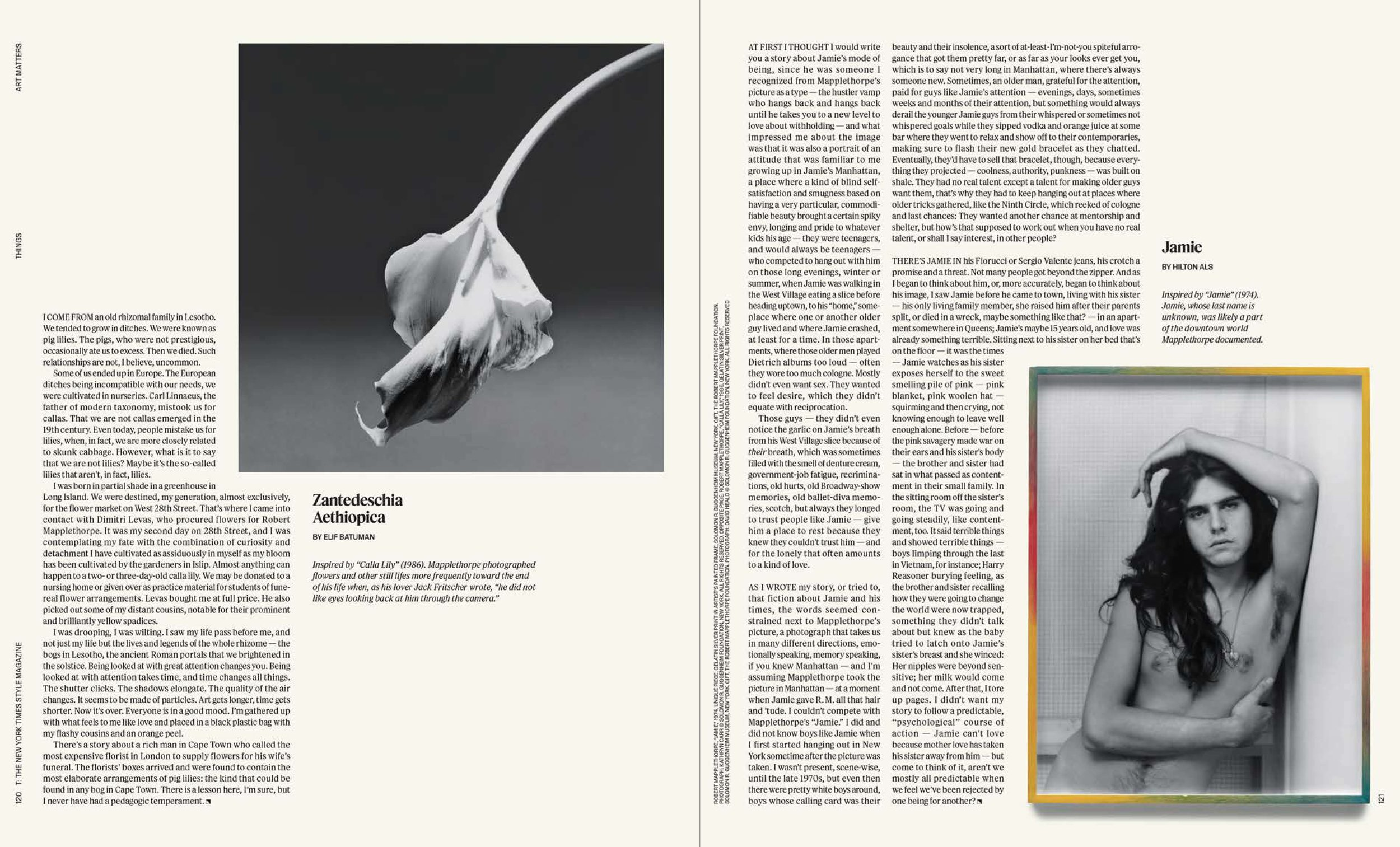 11_things.mapplethorpe(spreads)-2 copy.jpg