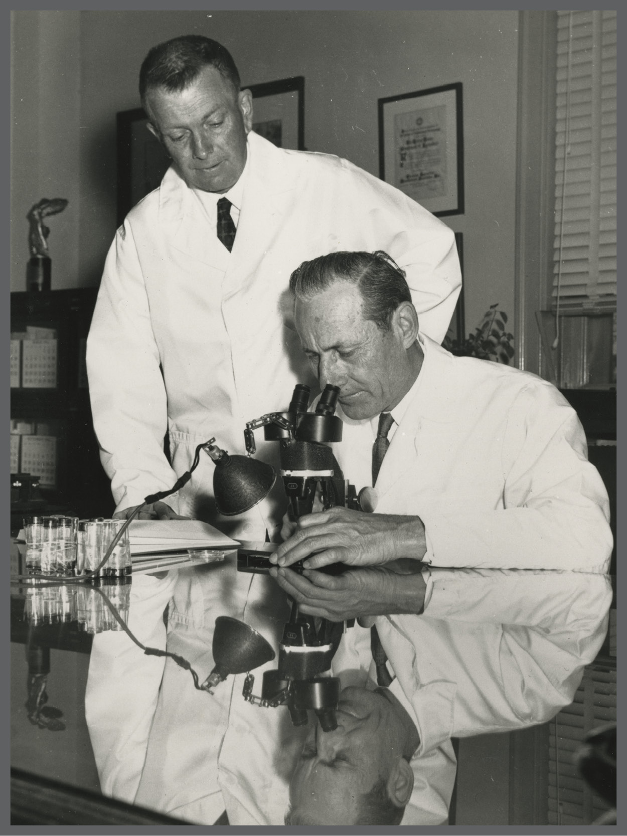 Raymond C. Bushland (standing) and Edward F. Knipling (seated at microscope).  Photo courtesy of World Food Prize Foundation.