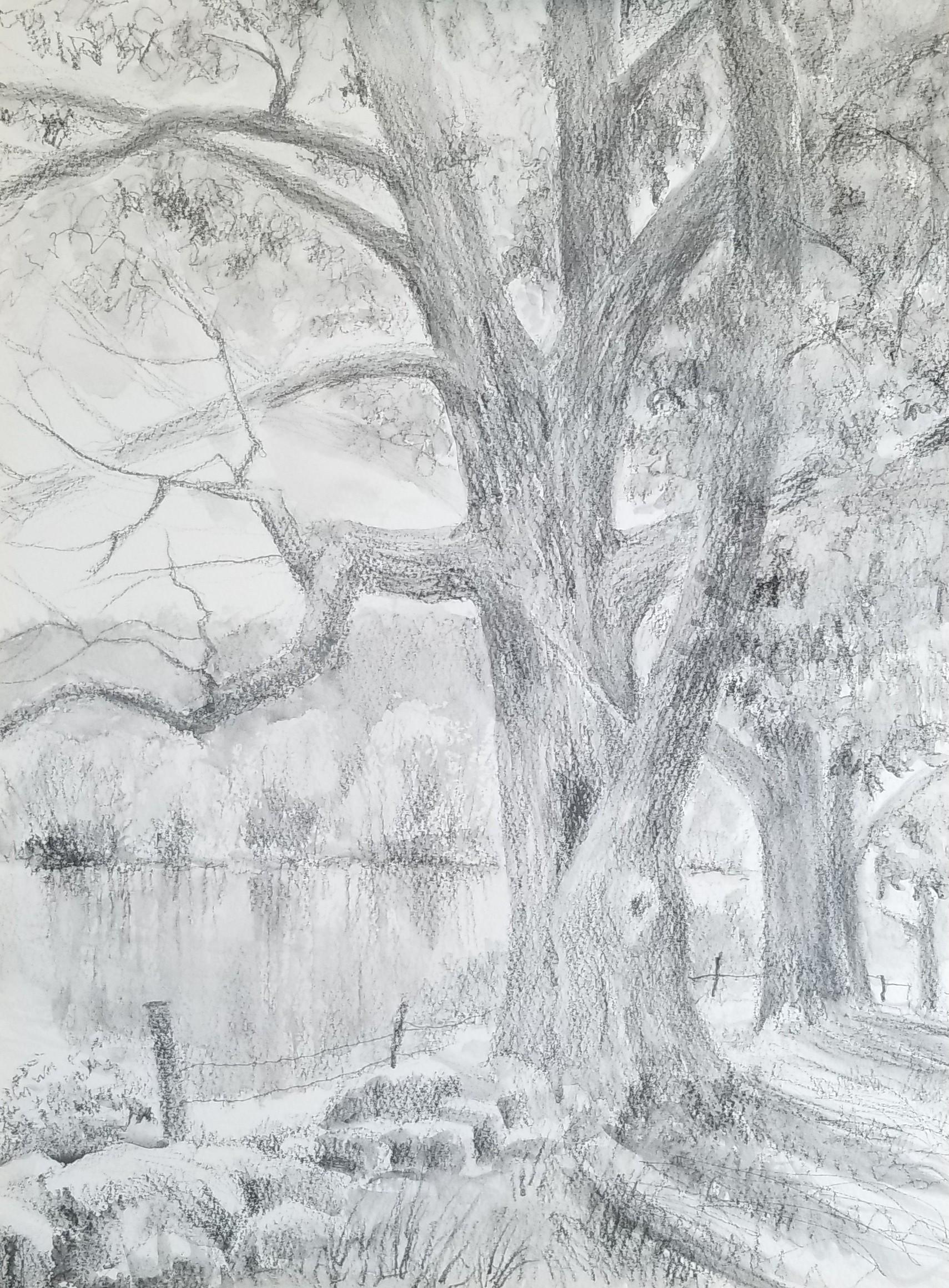 Mainstone farm view-2-pencil.jpg