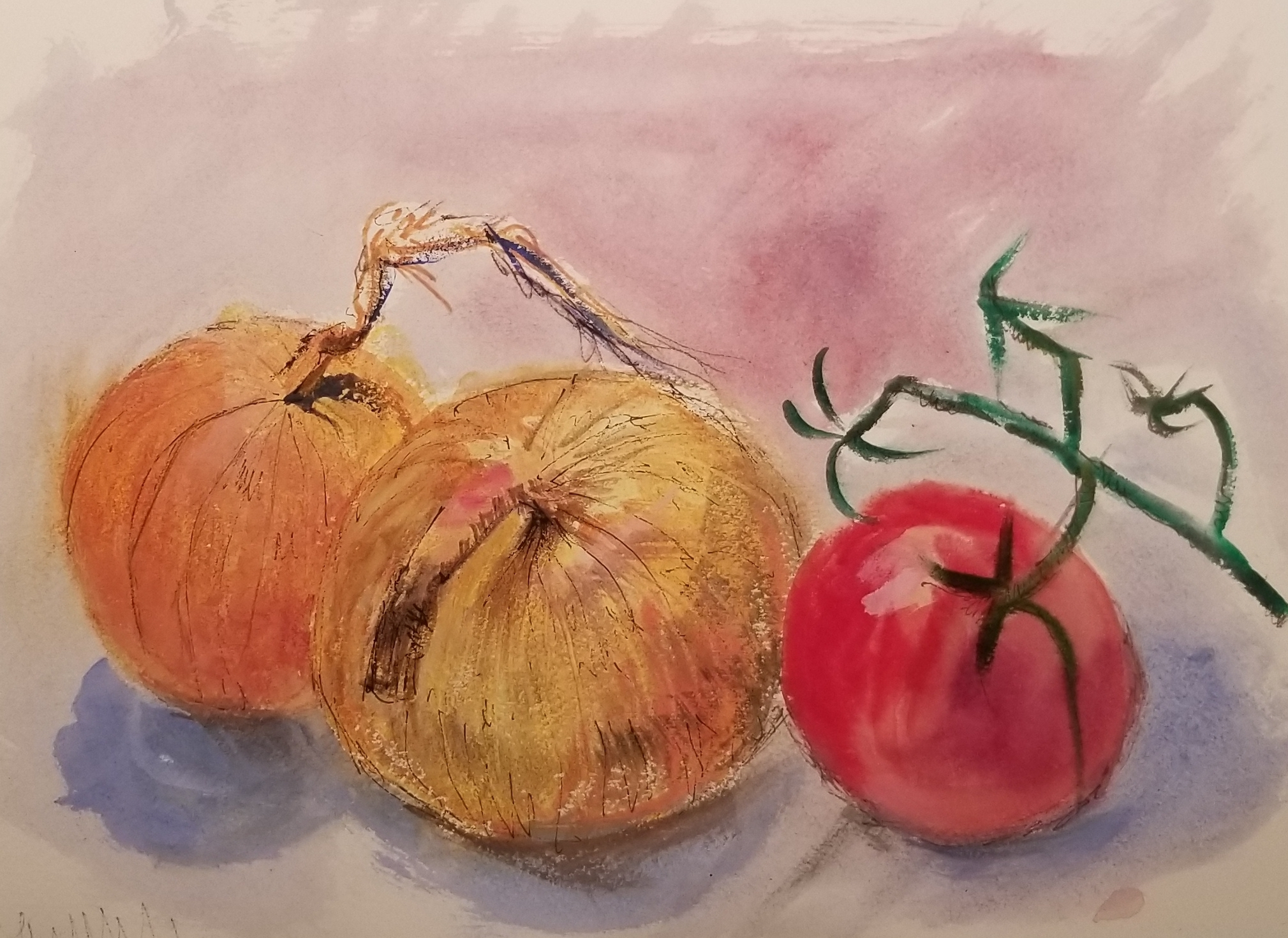 Onions and tomato, watercolor sketch by Nancy Boyle.jpg