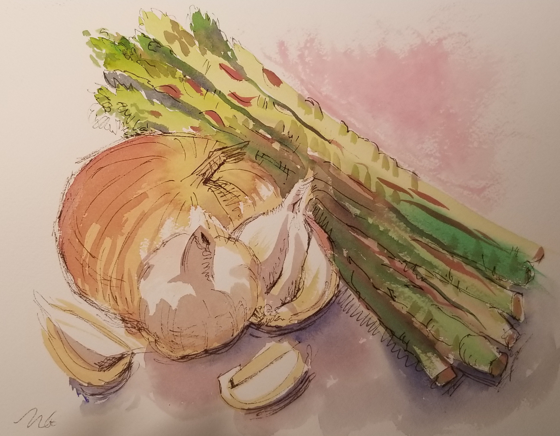 Onion and asparagus, watercolor sketch by Nancy Boyle.jpg