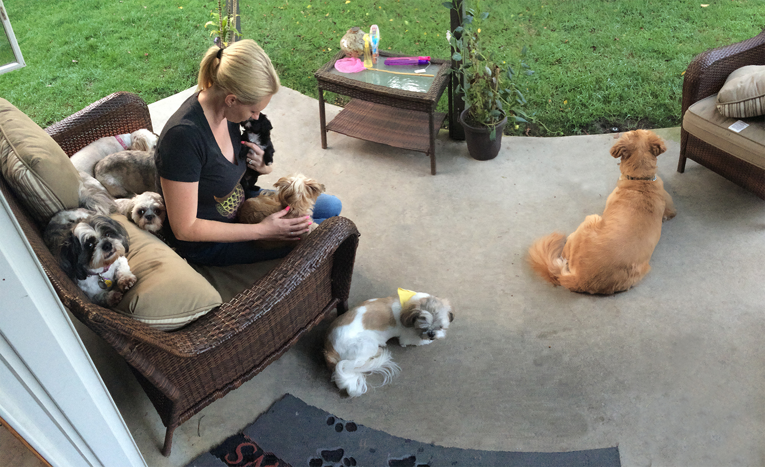 Kedda and Dogs relaxing on the patio at Bow Wow's Hangout.jpg