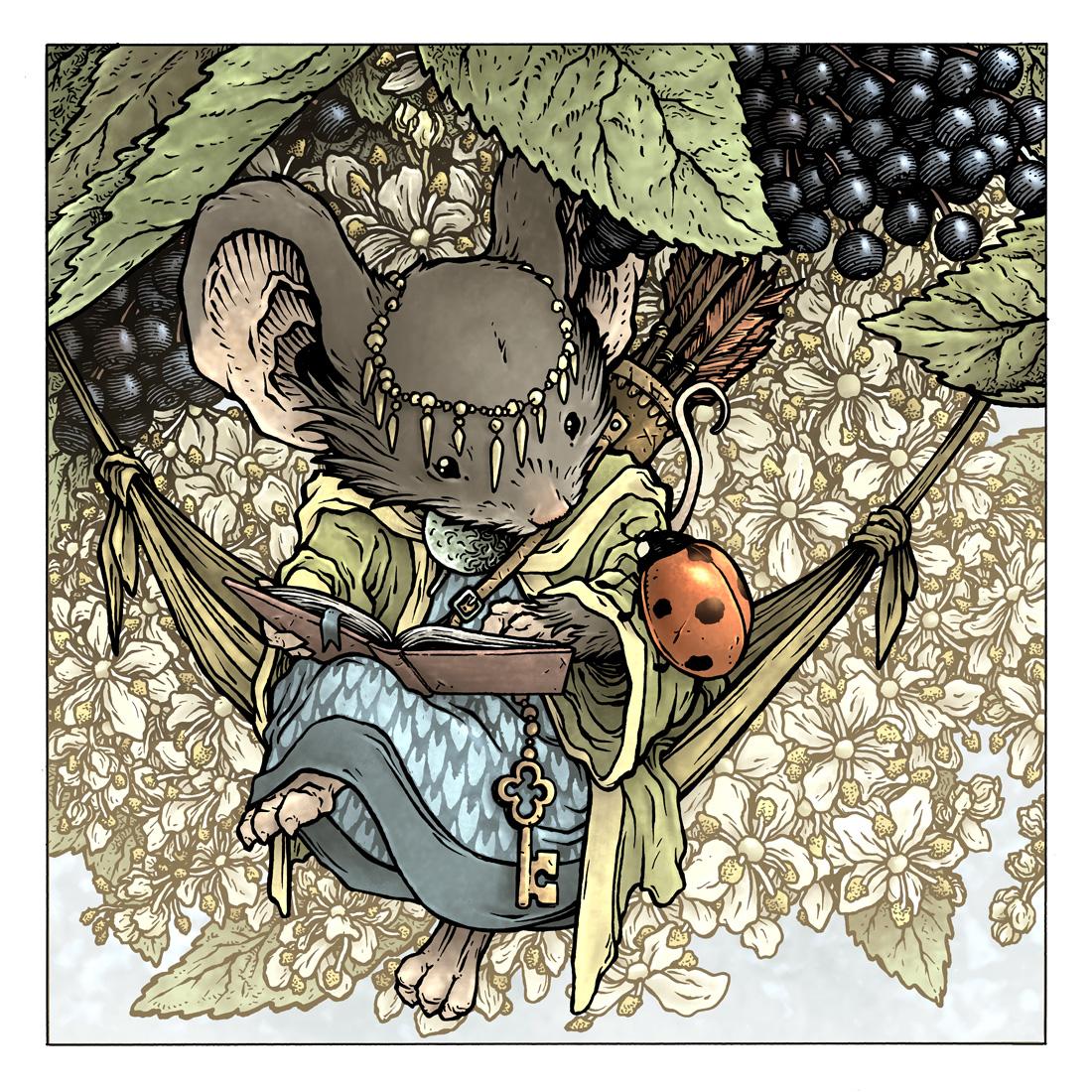 Elderberry colors.jpg