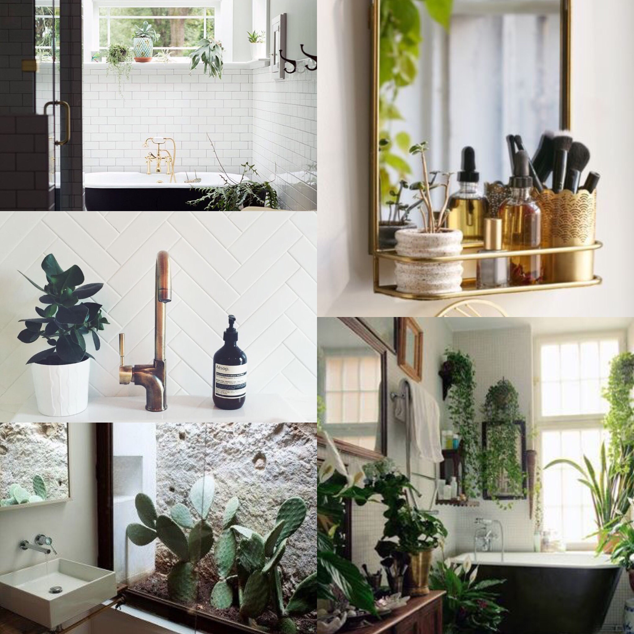 Clockwise from top left.  Bathroom, Gold Accents.   Gold Vanity Mirror .  Bathroom, Hanging Plants .  Bathroom, View of Cactus.   Bathroom, Copper Accent, and Plant.