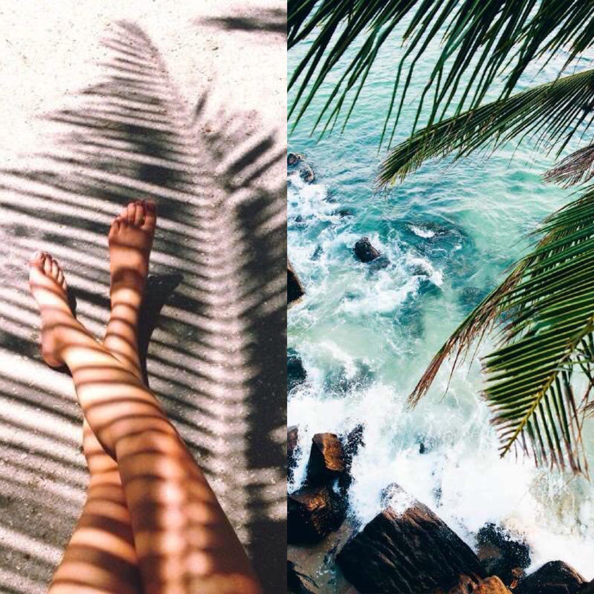L-R:  Legs & Palm ,  Blue Water & Palms