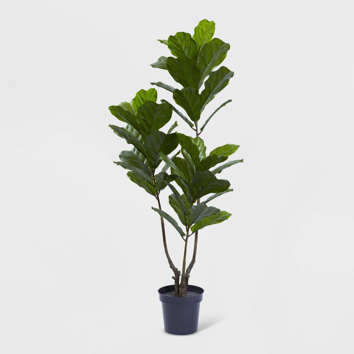 65%22 fiddle leaf fig tree.jpg