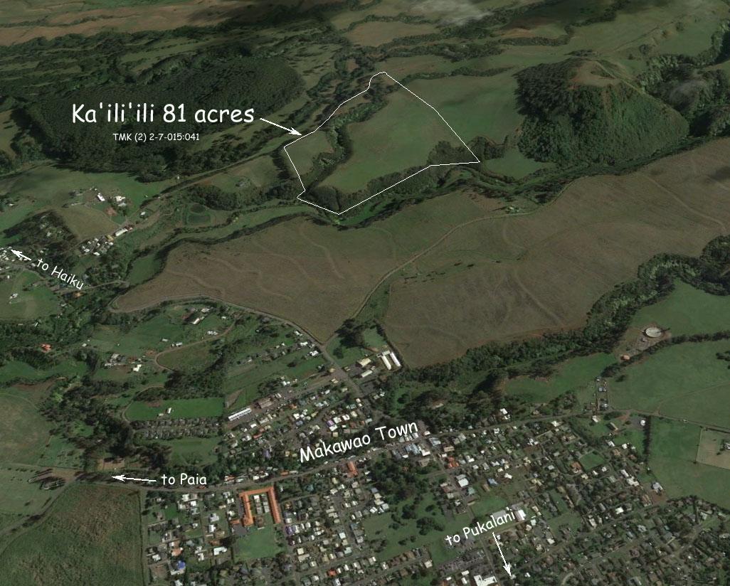 aerial photo of Kailiili 81 acres  2-12-16.jpg
