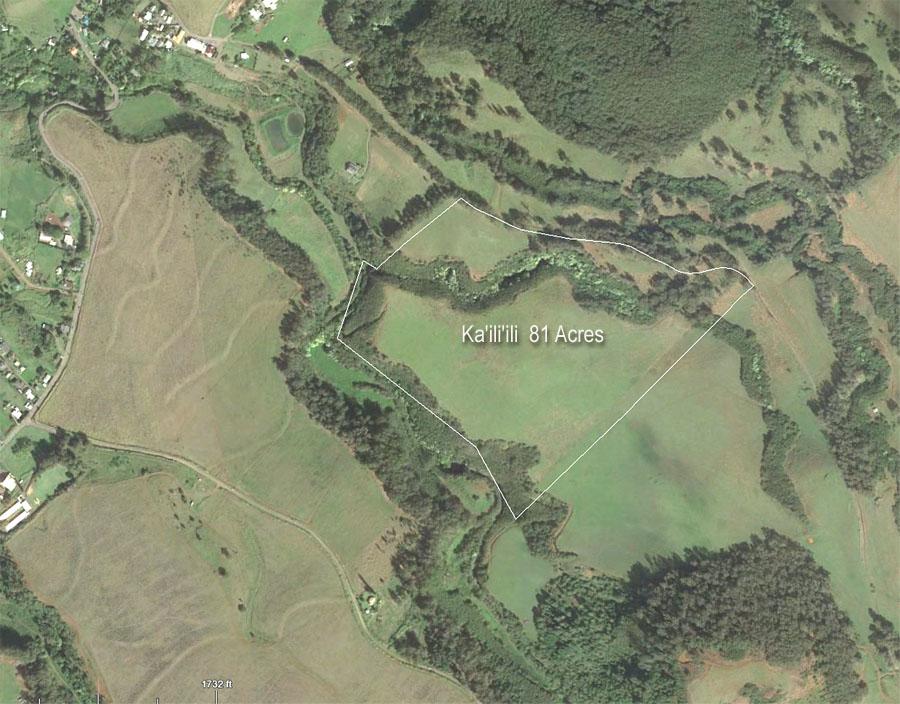 Kailiili aerial vertical.jpg