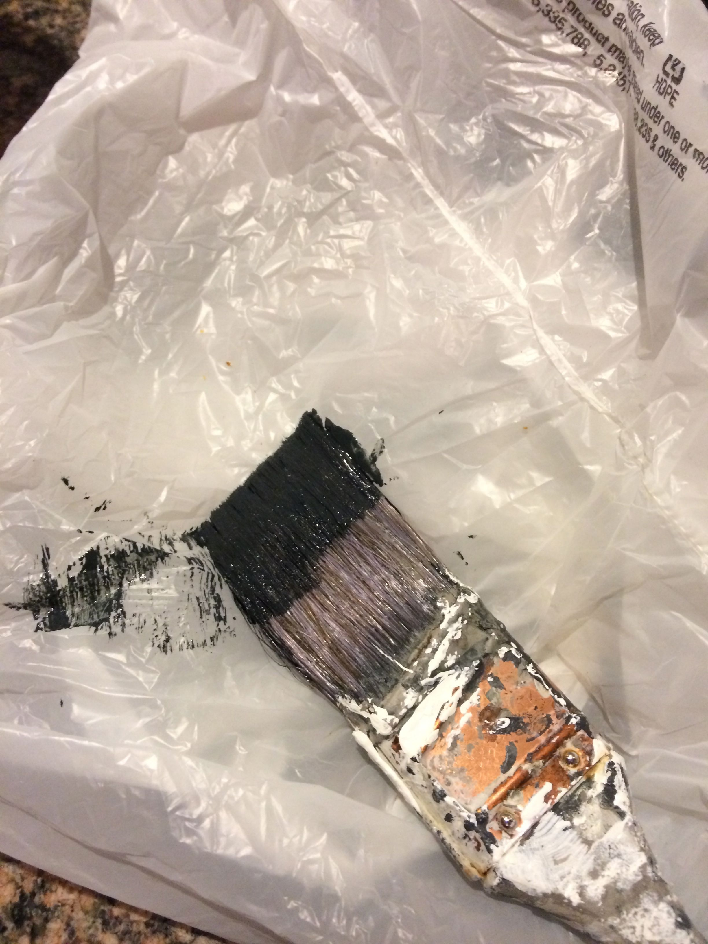 Lay brush in the middle of a plastic bag.