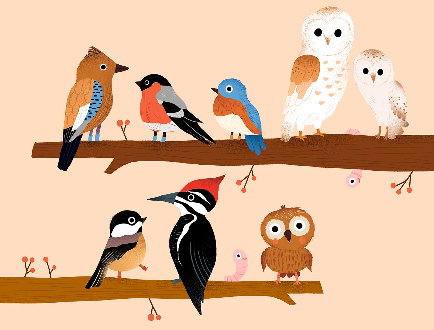 Birds on branches auzou 1.jpg