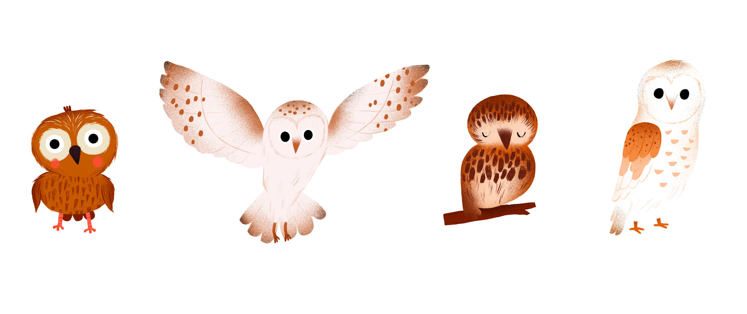 animal stickers auzou 2 owls.jpg