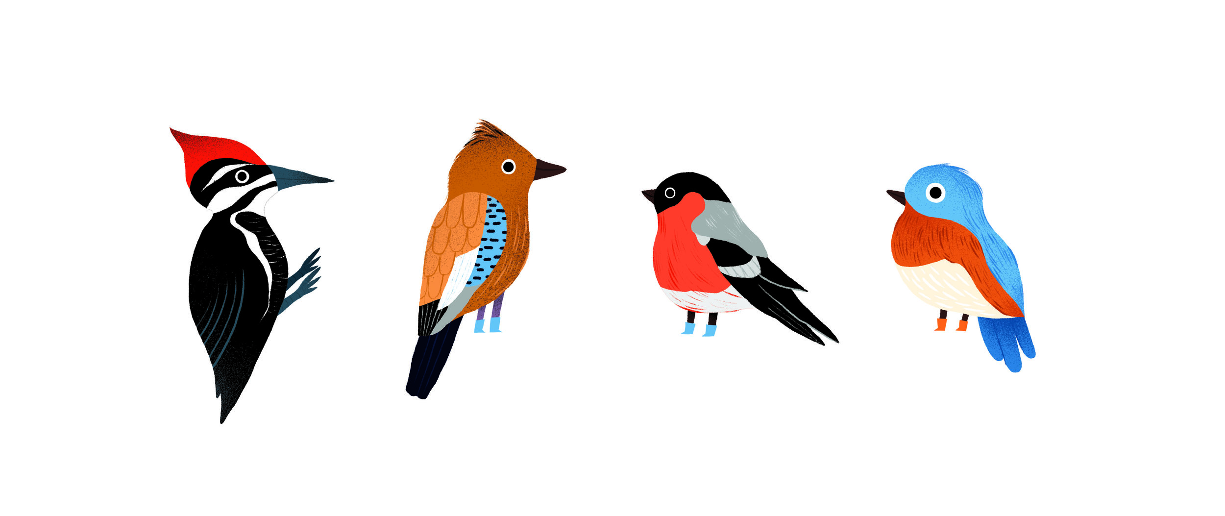 animal stickers auzou 3 birds.jpg