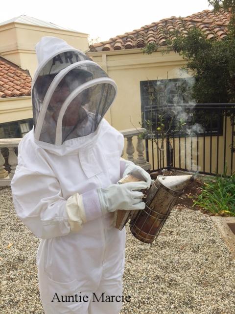 bees 5.jpg