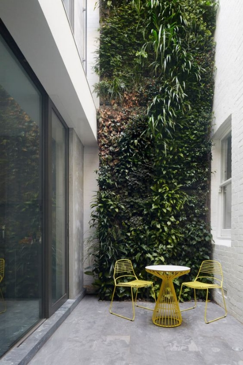 Plant-filled courtyard  (   image source   )
