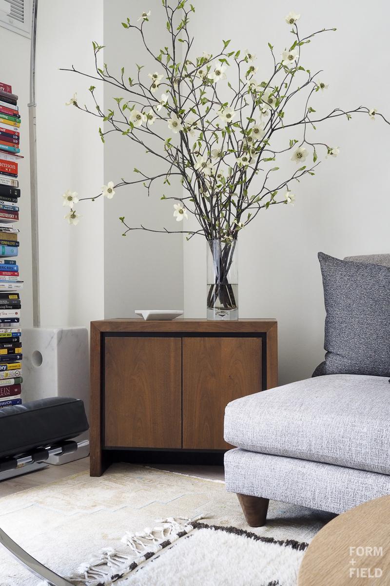 SOMA Modernist Condo Living Room Cabinet