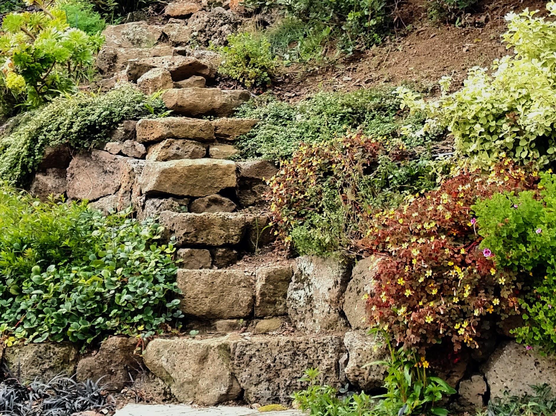 stone stairs 2.jpg