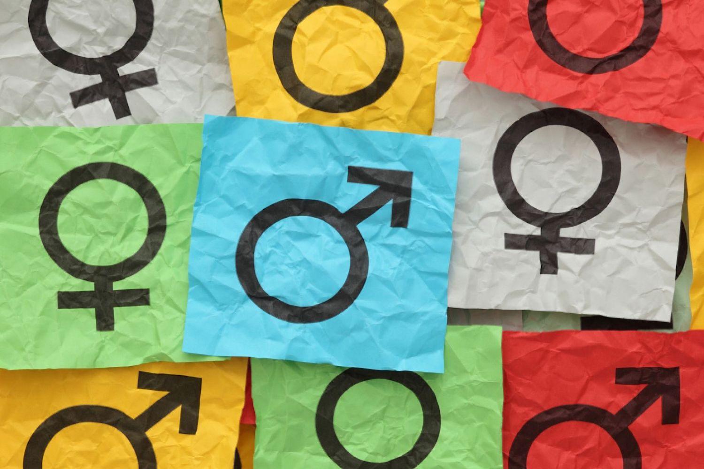 banner-gender-diversity.jpg